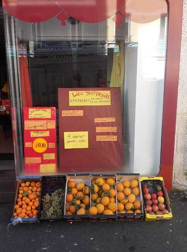 fruits_sourie-ion_local_temporaire
