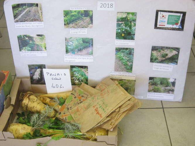 l%C3%A9gumes-panneau-jardinage-IMG_6164%208