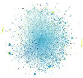 ssb_networks_graph_gephi