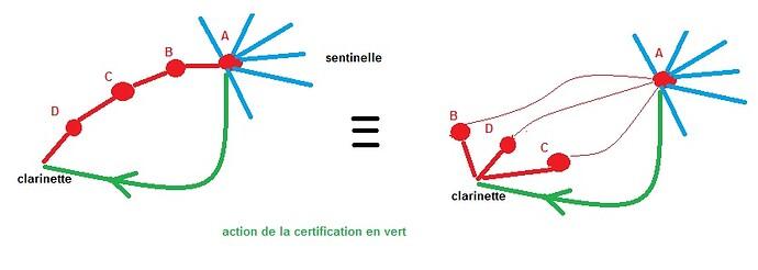 sentinelle certification