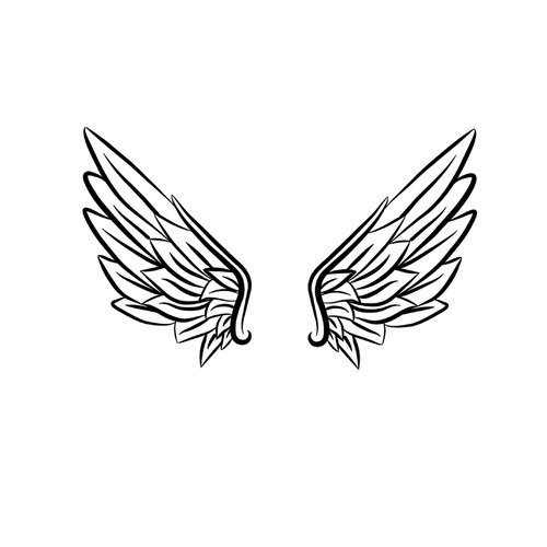 1822597-flex-15cm-paire-d-ailes-1_medium